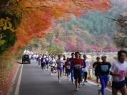 第8回富士山マラソン(11月24日)
