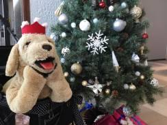 12/23、12/24のクリスマスイベントのお知らせ