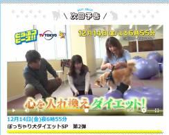 12/14テレビ東京「どうぶつピース」で当館のドッグフィットネスが紹介されます!