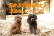 【軽井沢2施設連泊キャンペーン】のご案内