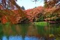 【軽井沢で楽しめる紅葉のご案内】