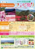 小室山公園 つつじ祭りのご紹介